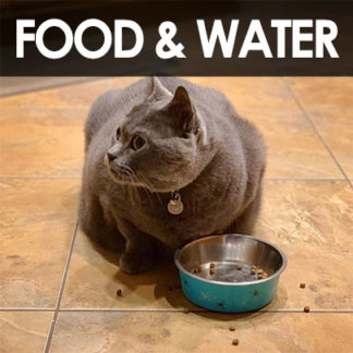 Food Water and Treats
